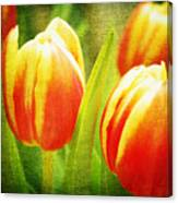 Power Of Spring Canvas Print