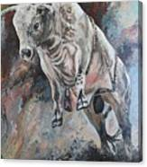 Power Of The Bull Canvas Print