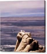 pr 132 - Nap Time in Monterey Canvas Print