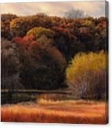 Prairie Autumn Stream Canvas Print