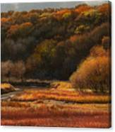 Prairie Autumn Stream No.2 Canvas Print