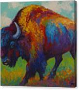 Prairie Muse Canvas Print