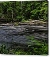 Prairie River Log Jam Canvas Print