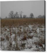 Prairie Snow Canvas Print