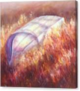Pray For Rain Canvas Print