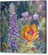 Precocious Poppy Canvas Print