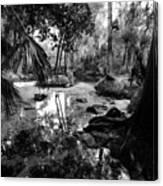 Precolumbian Florida Canvas Print