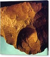 Prehistoric Flint Blade Canvas Print