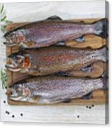 Preparing Trout For Dinner  Canvas Print