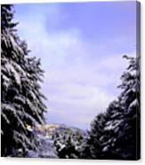 Pretty  And  Cold Canvas Print