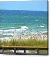 Pretty Blue Gulf Canvas Print