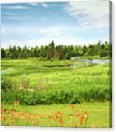Pretty Countryside Canvas Print