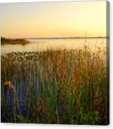Pretty Evening At The Lake Canvas Print