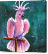 Pretty In Pink Aceo Canvas Print
