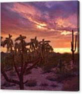 Pretty In Pink Desert Skies  Canvas Print