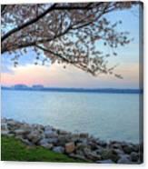 Pretty Potomac Canvas Print