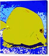 Pretty Yellow Fish Canvas Print
