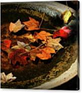 Priceless Leaves Fall Canvas Print