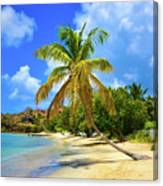 Prickly Bay Canvas Print