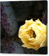 Prickly Bee Canvas Print