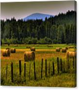 Priest Lake Hay Bales II Canvas Print