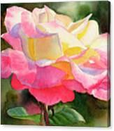 Princess Diana Rose Canvas Print