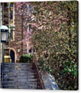 Princeton University Old Stairway Canvas Print