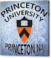 Princeton University Princeton Nj. Canvas Print