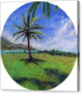 Princeville Palm Canvas Print