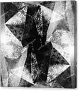 Prismatic Vision - Black And White Canvas Print