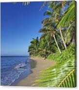 Private Molokai Beach Canvas Print