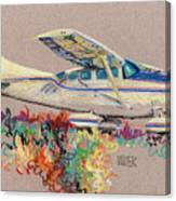 Private Plane Canvas Print