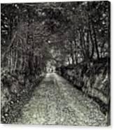 Private Road B Canvas Print