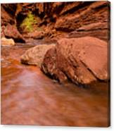 Professor Creek Canyon 2 Canvas Print