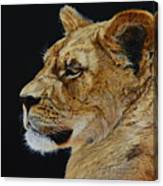 Profile Of A Lioness Canvas Print