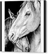 Protection In Black And White Canvas Print