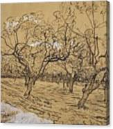 Provencal Orchard Arles  March - April 1888 Vincent Van Gogh 1853  1890 Canvas Print