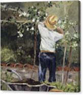 Pruning Time In Umbria Canvas Print