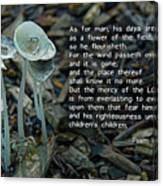 Psalm 103 Temporary And Eternal Canvas Print