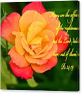 Psalm 34 V 19 Canvas Print