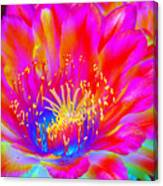Psychedelic Pink Flower Canvas Print