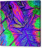 Psychodelic Tree Frog Canvas Print