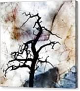 Psychotropic Moon Canvas Print