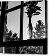 Pt 2 Flowers On A Windowsill Canvas Print