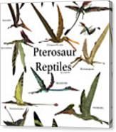 Pterosaur Reptiles Canvas Print
