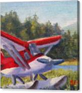 Puddle Jumper Canvas Print