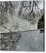 Puddle Reflection Canvas Print