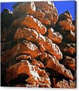 Pueblo Museum 15 Canvas Print