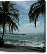 Puerto Rican Beach Canvas Print