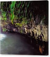 Puerto Rico Waterfall Canvas Print
